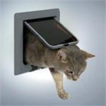 Gør kattens liv bedre (foto petworld.dk)